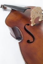 """Cello"" by Pixomar / FreeDigitalPhotos.net"