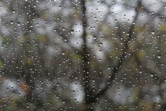 rainy-day-1831908_1920.jpg